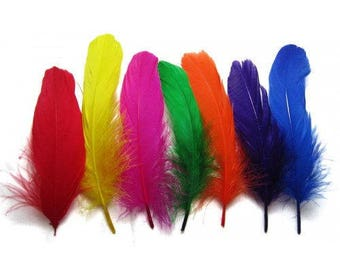 25 Colourful Goose Nagoire Feathers .  UK Supplier