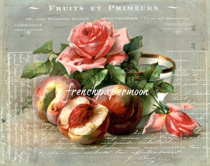 Vintage Digital Fruit Graphic, French Peaches, Roses, Botanical Print, Kitchen Printable, Instant Download, Fabric Transfer
