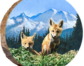 Two Fox Cubs - DAS046