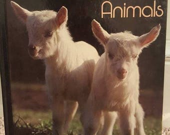 Baby Farm Animals book- Vintage- National Geographic Society