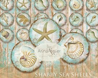 Shabby Sea Shells 1 inch Circles - Digital collage Sheet - Digital Circles - Digital Collage Sheet for ears, Bijoux Circles - Digital Tags