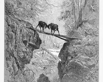 """The Two Goats engraving by Gustave Doré - La Fontaine - Original engraving from """"The Dore Gallery"""" Edmund Ollier 1870"""