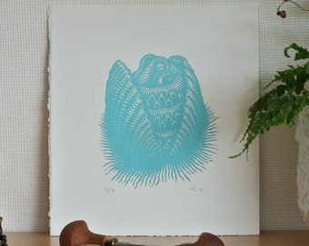 Turquiose Coconut Octopus Original Linocut Print, Hand Printed Limited Edition of 3