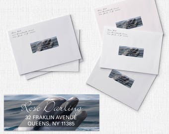 120 Address Label, Custom Address, Address Labels, Dolphin Address, Return Address Labels, RSVP Address - Standard 1 x 2 5/8