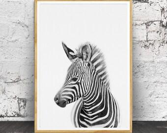 Baby Zebra Print, Nursery Animal,Baby Animal Prints, Kids Printable Art, African Animal, Safari Print, Baby Animals, Safari Wall Art, Zebra