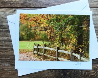 Fall  Foliage Greeting Card with Envelope / Photograph Shot and Processed by Carol Kutz / Blank Greeting Card / All Occasion / Thank You