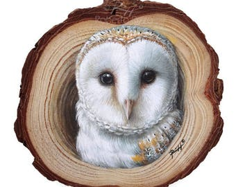 A Realistic Barn Owl Coming Out from Its Lair, a Unique Wood Slice Painting by Roberto Rizzo! Original Art 100% Hand Painted!