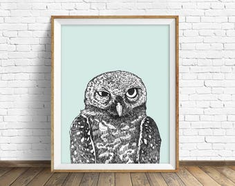 "owl wall art, owl drawing, snowy owl wall art, large art, large wall art, fine art prints, wall art prints, woodland animals - ""Spotted Owl"""