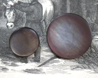 Silvery Abalone Shell Shank Buttons x 2 Big Little
