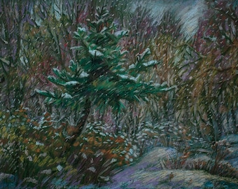 Winter Flowers. Snowfall