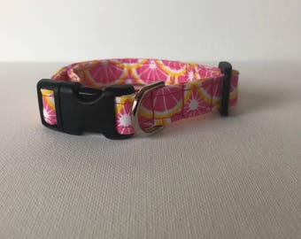 S Pink Lemonade Collar