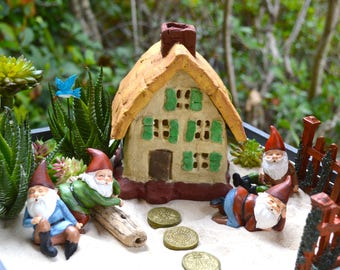 Fairy Garden Kit ~ Gnome Garden Starter Set ~ Cottage ~ Stepping Stones ~ Gnome Choice ~ Blue bird ~ Wooden Planter and Plant options ~ Gift
