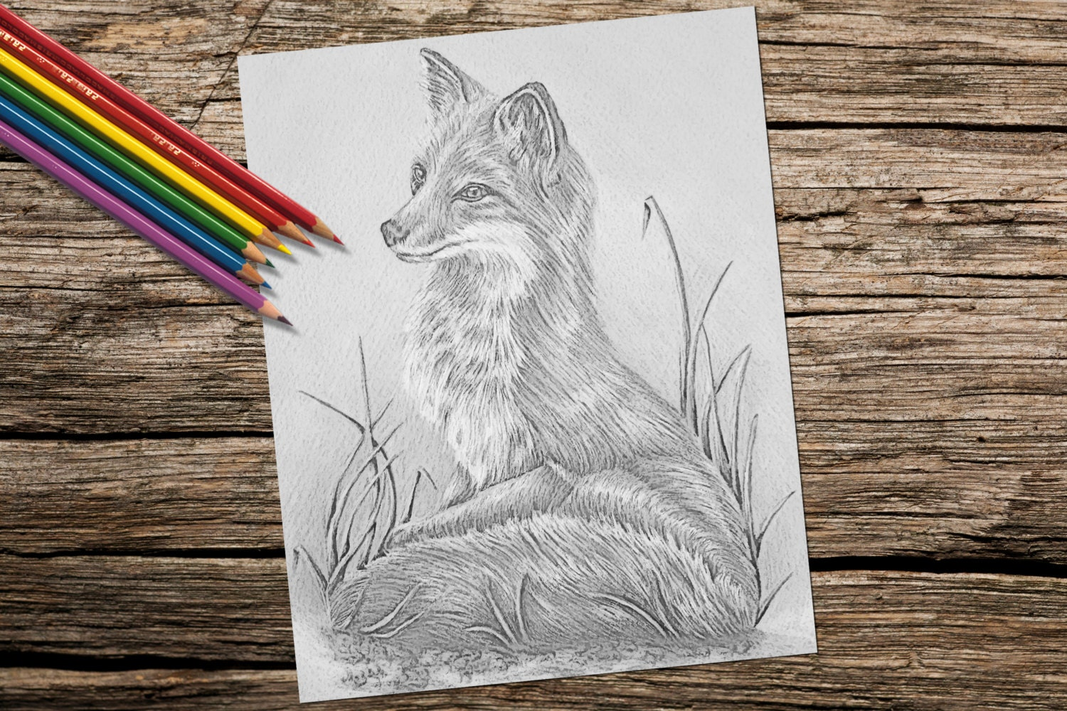 Garden Animals Coloring Pages : Adult coloring page fox grayscale coloring pages instant
