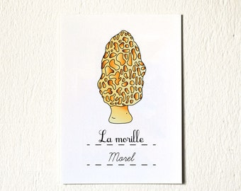 Kitchen Art 'Morel' Food illustration Art Print - Kitchen Wall art - 5x7 mushroom yellow Spring Home Decor