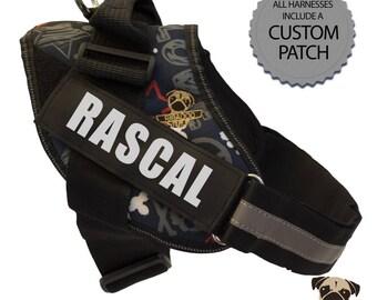 Rascal Custom Dog Harness