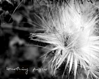 Black and White Photography - Seamus Heaney Fine Art Photograph - Heaney Poetry Print - Northern Ireland - 8 x10