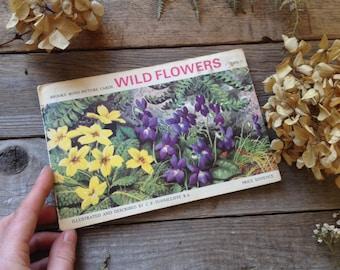 1930s Wildflower Book - FULL SET Tea Cards - Watercolour Artist - Painting book - Creative gift - Artist Gift - Nature Book