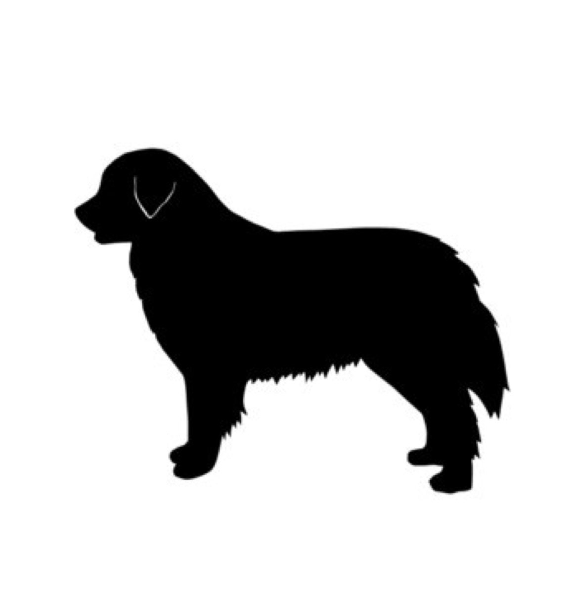 Burnese Mountain Dog Stencil Made From 4 Ply Mat Board