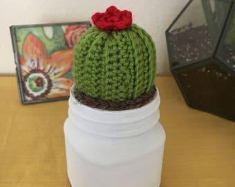Barrel Cactus (red)
