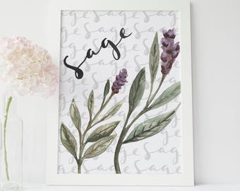 Sage Print, Herbal Kitchen Decor, Botanical Poster, Herb Print, Common Cooking Herbs, Culinary Herbs, Sage Decor, Herb Printable Artwork