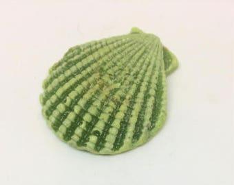 Glass shell - green
