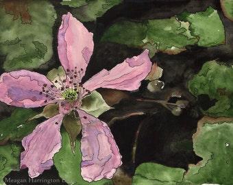 Pink Rose Painting - LARGE 13x19 print - Wild Irish Rose - Watercolor Fine Art Giclee