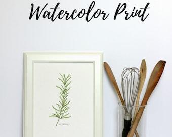 Herb Painting, Botanical Print, Kitchen Wall Art, Watercolor Prints, Illustration Art, Wall Art Prints, Gfits for Gardeners, Gift Under 20