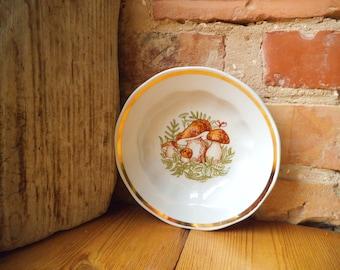 Set of 2 Porcelain Plate Mushrooms Kids Plate Pasta Soup Bowl Vintage Kitchen Riga Porcelain RPR Soviet Tableware Collectible USSR 1970
