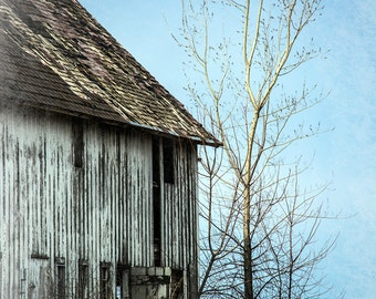 Old Barn with Tree Note Card, Ready to Ship