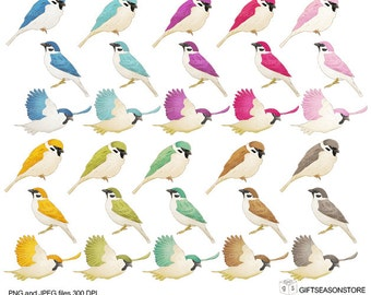 Birds digital clip art  for Personal and Commercial use - INSTANT DOWNLOAD