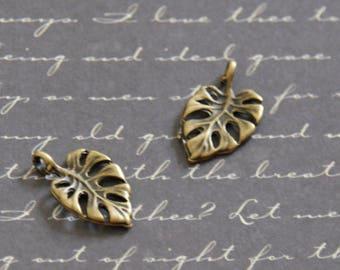 2 Monstera leaf charms