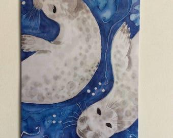 Atlantic seal notecard