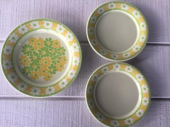 Vintage Franciscan pottery dinner plate salad plate Picnic