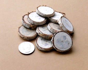 10 Miniature Wooden Stepping Stones for Fairy Garden Path