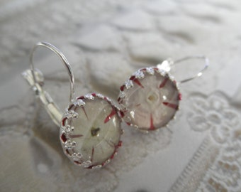 Snowball Bush Blossoms Atop Red Background Glass-Crown Leverback Victorian Pressed Flower Earrings-Gifts For 28-Symbol of Thoughts of Heaven