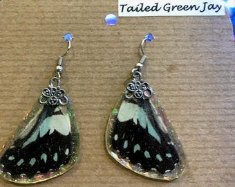 Handmade Butterfly Wing Earrings REAL