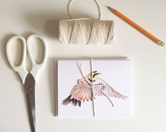 Set of Watercolor Art Greeting Cards, Watercolor Originals, Birds, Plants, Mix and Match