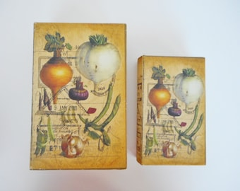 Vintage looking secret book boxes Set of 2 magnetic closure fabric cover seed packet botanical apothecary shabby organic garden diary box