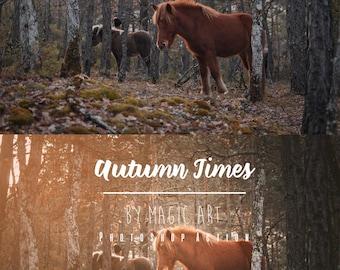 Autumn Time - Photoshop Action