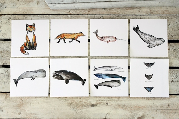 BESTIARY Magdalen Islands POSTCARDS, choice of 8 cards