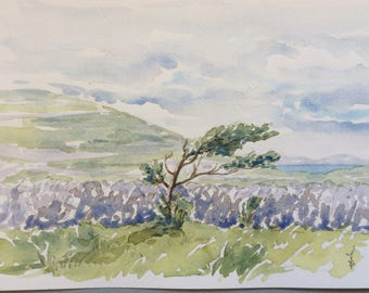 Original watercolor painting, landscape of Ireland, tree in the wind