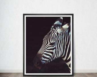 Zebra Poster , Art Print, Digital Art, Digital Art Print, Digital Artworks, Digital Print Art, Digital Art Download