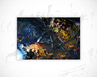 Limited Edition Fine Art Print | Afterglow #14