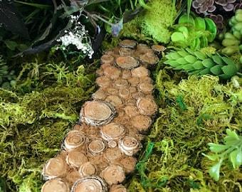 Miniature Tree Stump Path