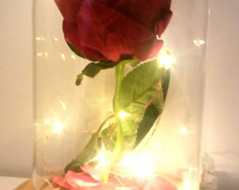 Beauty and the beast style rose