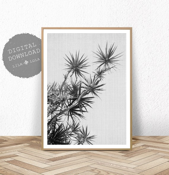 Large Wall Art, Printable Digital Download, Black and White Plant Photography, Beach Wall Art, Black and White Botanical Plant Printable