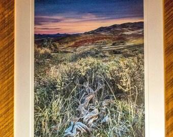 Fine Art, Reclaimed Barn Wood, Barn Wood Frame, Landscape photography,  16x24, Photograph, Painted Hills, Oregon.