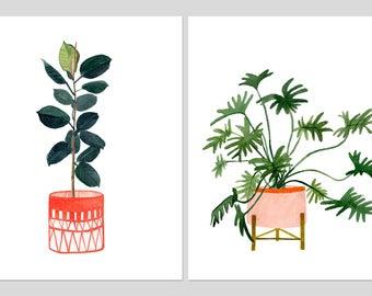 """Zwei Druck-Set: """"Ficus Elastica"""" & """"Philadendron Xanadu"""" Museumsqualität von Lindsay Gardner"""