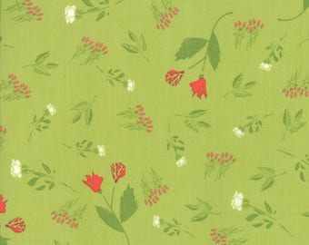 Moda THE FRONT PORCH Quilt Fabric 1/2 Yard By Sherri & Chelsi - Pistachio 37541 14