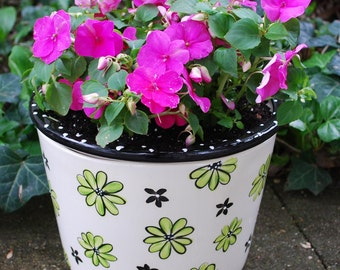 Large Self-watering African Violet Pot